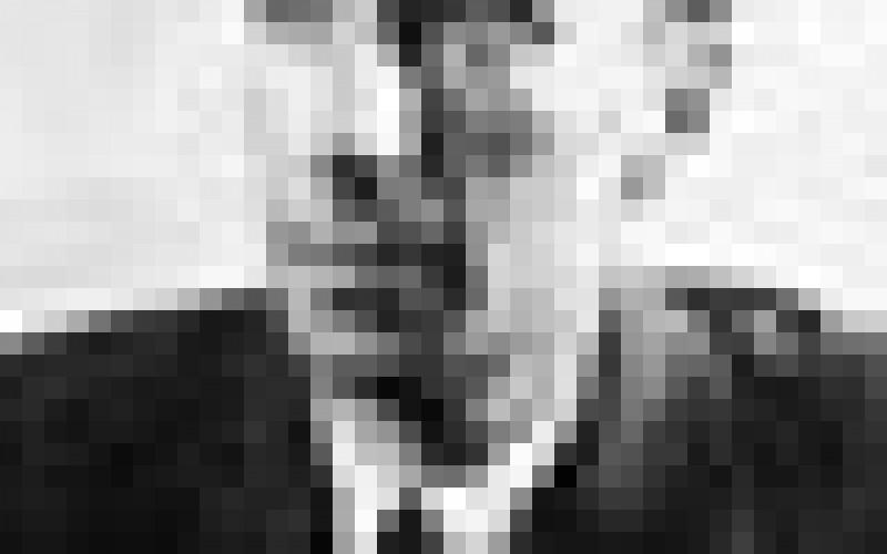 Elhunyt Fónagy Iván