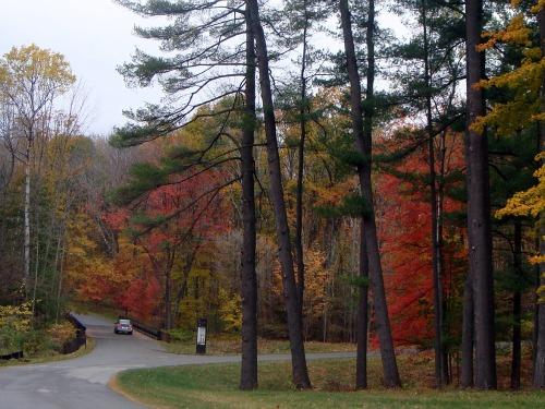 Ahogy vannak őszi emberek, úgy vannak őszi városok is. Bostonban az ősz...olyan, amire azt mondja az