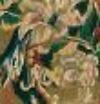 A teraszról rálátni a lakóparkra, mondja Hanna, a helyén kivágtak egy jó darab erdőt. (Sikerült természe