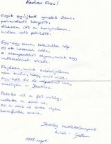 Karafiáth Orsolya - Nagyvizit