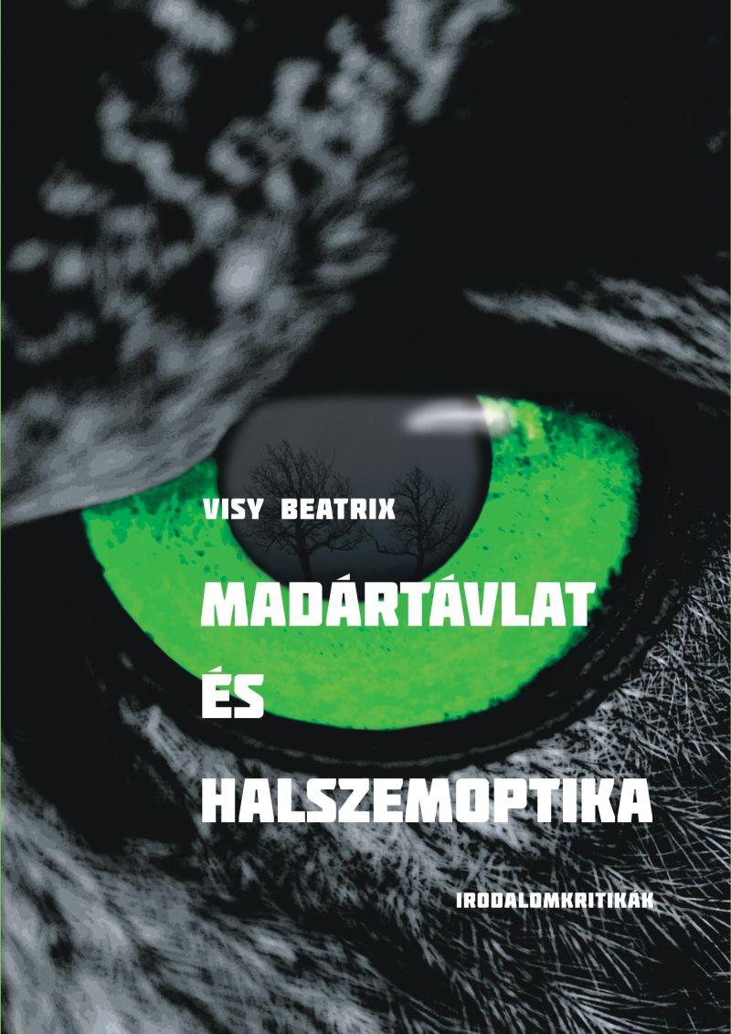 Visy Beatrix: Madártávlat és halszemoptika (részlet)